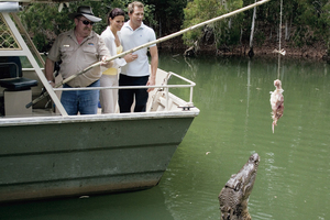 The inmates at Hartley's Crocodile Adventures appreciate a bit of easy meat. Photo / Supplied