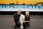 Rob Ellis and Carole Ellis, owners of Pets in the City Hotel and Day Spa in Mt Wellington, Auckland. Photo / NZ Herald