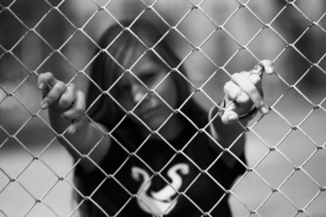 Offenders aged from 3 to 98 years old have been dealt with by police recently. Photo / Thinkstock