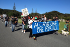 Protestors at Waitangi, Northland. Photo / APN