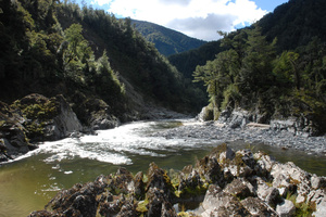 The Mokihinui dam would have created a lake 14km long and helped shore up power supply on the West Coast. Photo / Supplied