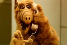 Alf is making a comeback.  Photo / Supplied