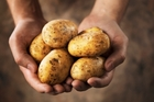 Potatoes have a lot more vitamins than rice and pasta. Photo / Thinkstock