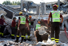 Rescue teams use dogs as they look for three workers reported missing at the Haemotronic factory in Medolla, northern Italy after the 5.8 quake which struck there. Photo / AP