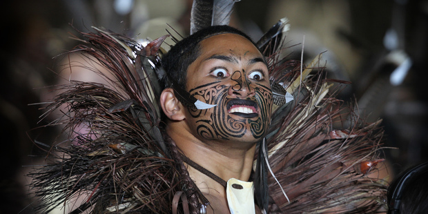 Louis Crimp considered Maori input at the World Cup to be 'embarrassing'. Photo / Greg Bowker