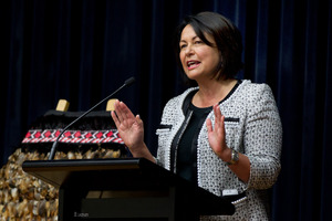 Education Minister Hekia Parata. Photo / Brett Phibbs