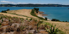 View: Rotoroa Island, Hauraki Gulf