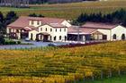 Ascension Wine Estate at Matakana.  Photo / Supplied