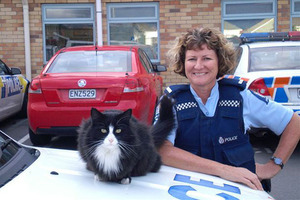Purrfect: Quake refugee Penny, also known as Bobby, with Constable Pamela Cox.