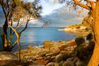 Tasmania's Bay of Fires. Photo / Thinkstock