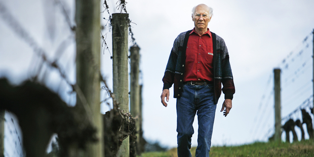 Peter Babich, owner of Babich wines. Photo / The Aucklander