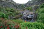 The subtropical Whangarei Quarry Gardens. Photo / Alexia Santamaria
