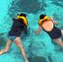 Sea turtles are easy to spot. Photo / Tourism Malaysia