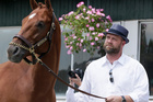 &quot;No complaints, no hurdles,&quot; trainer Doug O'Neill said. &quot;He's being good.&quot;  Photo / Matt Slocum