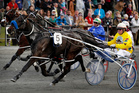 Brent Mangos drives Five Card Draw to victory in the SkyCity 2-year-old Emerald Pace on Saturday. Photo / Christine Cornege