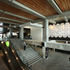 Te Hononga - Christchurch Civic Building Interior - Resene Green Building Property Award.