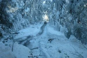 The roads around Arthur's Pass remain impassable. Photo / supplied