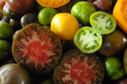 Heirloom tomatoes on display at the Noosa Food and Wine Festival. Photo / Nici Wickes