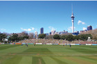 The Victoria Park plan would cater for between 8000 and 10,000 spectators, seen as ample for test and domestic cricket. Photo / Supplied