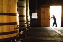 Tom McDonald Church Road Winery in Hawke's Bay. Photo / NZ Herald