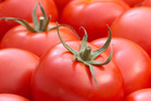Italian processed tomatoes were dumped onto the New Zealand market. Photo / Supplied