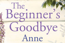 Cover for The Beginner's Goodbye. Photo / Supplied