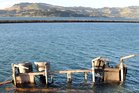 Unstuck . . . A laden logging truck lost it's trailer which crashed through a barrier and into Blanket Bay early on Monday morning. Photo / ODT
