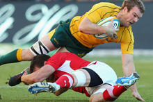 Pat McCabe of the Wallabies is tackled during the International Rugby Test match between the Australian Wallabies and Wales at Allianz Stadium. Photo / Getty Images.