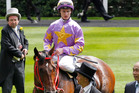 Trainer CS Shum leads Little Bridge back to scale at Ascot yesterday. Photo / AP