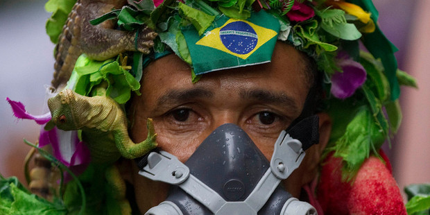 "An activist attends the Global March, part of ""People's Summit"", running parallel to Rio+20. Photo / AP"