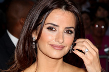 Penelope Cruz is amongst a lineup of stars who have signed on to a save the Arctic campaign. Photo / AP