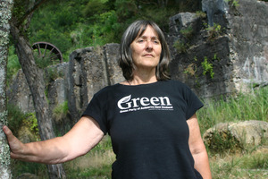 Green Party MP Catherine Delahunty says people needed to be aware of what was at stake with gold mining in Te Puke. File photo / NZ Herald