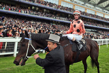 Black Caviar ridden by Luke Nolen wins the Diamond Jubilee Stakes during day five of the 2012 Royal Ascot meeting at Ascot Racecourse, England. Photo / AP