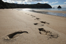 The Thames-Coromandel District Council is now considering a fresh call for public submissions. Photo / Alan Gibson