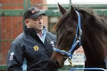 Black Caviar. Photo / AP