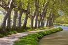 The curve of France's Canal du Midi is etched out by two rows of plane trees. There are said to be 45,000 between the Mediterranean port of Sete and the city of Toulouse. Photo / Thinkstock