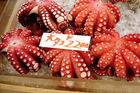 Octopus for sale at the Tsukiji fish market in Tokyo. Photo / Thinkstock