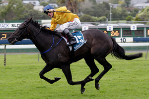 James McDonald winning the Telecom NZ Derby at Ellerslie on Silent Achiever in March. Photo / Richard Robinson