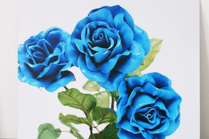 Blue Roses #1 by Richard Maloy at Sue Crockford Gallery. Photo / Supplied