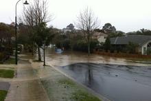 Flooding in Albany. Photo / Martin Joyce