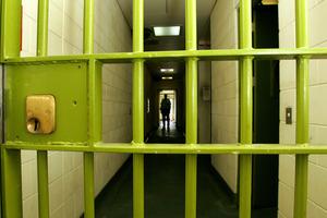The gang leader has been granted bail again. Photo / Brett Phibbs