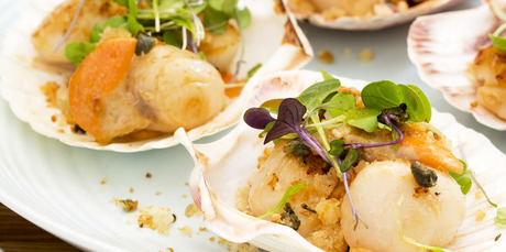 Seared scallops, micro greens and caper breadcrumbs. Photo / Babiche Martens