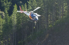 The forestry worker is winched up from the accident scene near Hawai. Photo / Tauranga Trustpower Helicopter