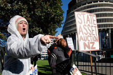 A protester decrying the sale of state assets at Parliament. On the same day, Government passed legislation underpinning plans for the sale of four state-owned energy companies. Photo / Mark Mitchell