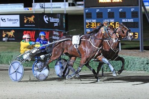 Guaranteed (10) wins a thrilling A$100,000 Vicbred Sires Final, beating out Border Control by a neck at Melton on Saturday night. Photo / Harness