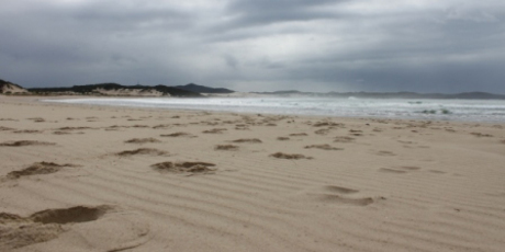 One Mile Beach at Port Stephens, New South Wales. Photo / Colin Espiner
