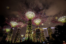 The Supertree Grove is lit against Singapore's skyline. Photo / Getty Images
