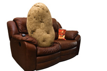 New Zealand is a nation of couch potatoes, according to a global compariso