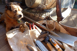 You'll be well rewarded for keeping your tools clean, oiled and sharp. Photo / Meg Liptrot