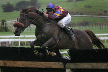 Afternoon rain could have led to bad visibility for jockeys. Photo / Alan Gibson
